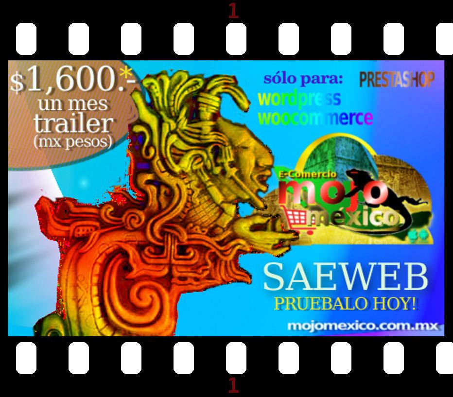 Saeweb conector creador por Mojomexico