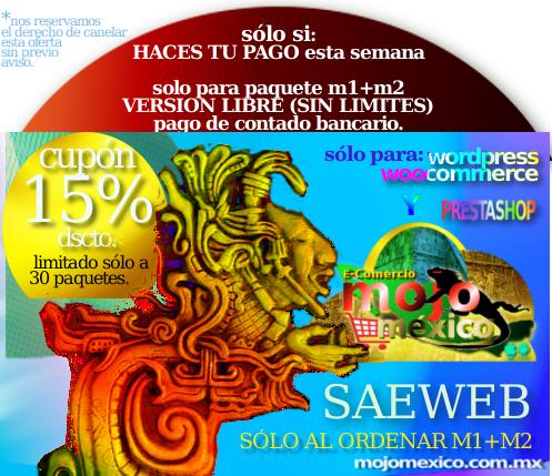Conexion Saeweb  con Tienda Web